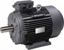 Elektromotor Aandrijftechniek Hartholt