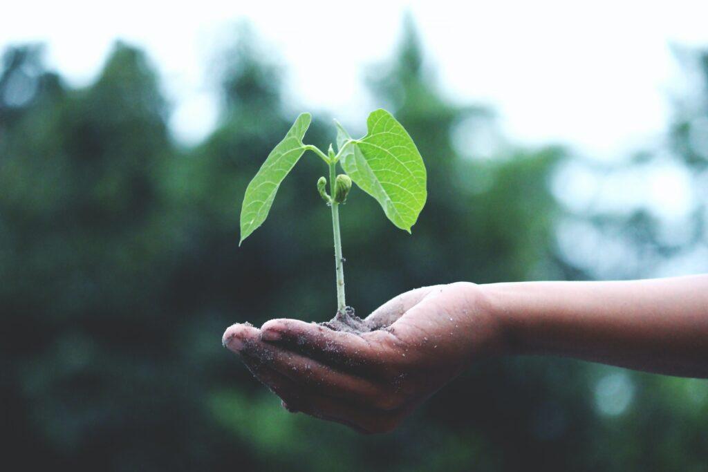 Subsidie voor Groningse industrie die wil vergroenen